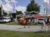 carfest-2013-18